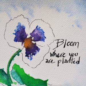 Kate Gering – Etegami – Bloom